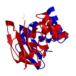 Image of CATH 1ayf