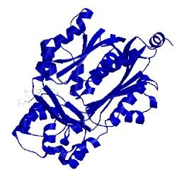 Image of CATH 1bq6