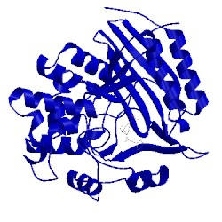 Image of CATH 1ceg