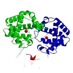 Image of CATH 1cls