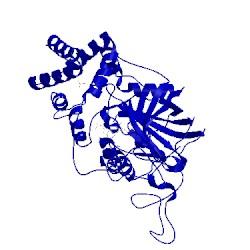 Image of CATH 1e93