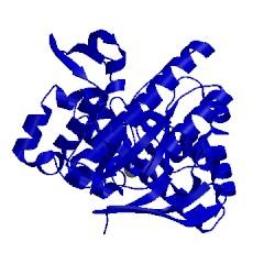 Image of CATH 1enu