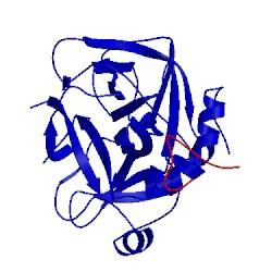 Image of CATH 1hcg