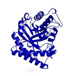 Image of CATH 1hjq