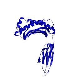 Image of CATH 1hoc