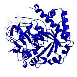 Image of CATH 1jnd