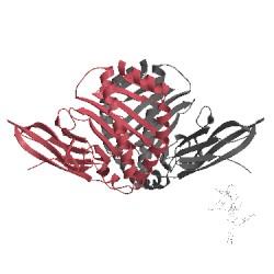 Image of CATH 1kj2