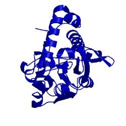 Image of CATH 1lag