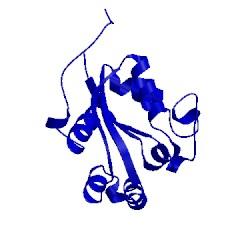Image of CATH 1leo