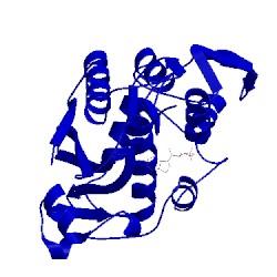 Image of CATH 1lpc