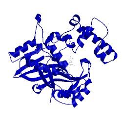 Image of CATH 1nje