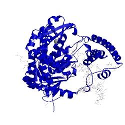 Image of CATH 1nke