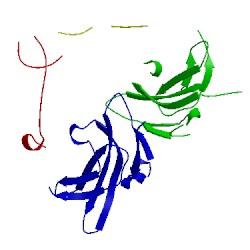 Image of CATH 1nyu
