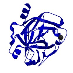 Image of CATH 1o37