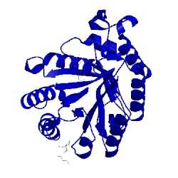 Image of CATH 1ocq