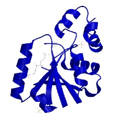 Image of CATH 1od6