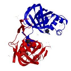 Image of CATH 1oru