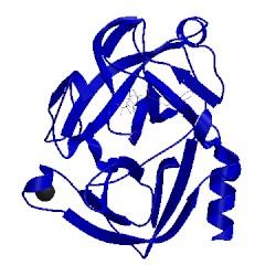 Image of CATH 1ql9