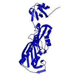 Image of CATH 1r3f