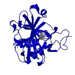 Image of CATH 1raz