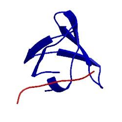 Image of CATH 1rlp