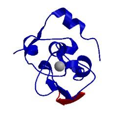 Image of CATH 1sdz