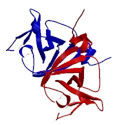 Image of CATH 1umu