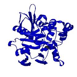 Image of CATH 1v73