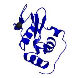 Image of CATH 1wtm