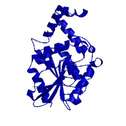 Image of CATH 1xrm