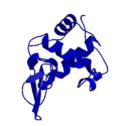 Image of CATH 2meg