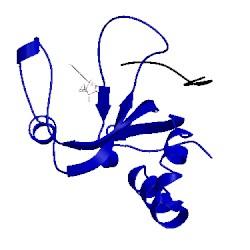 Image of CATH 2xfm