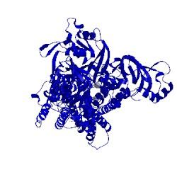 Image of CATH 2yfy