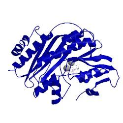 Image of CATH 2z1u