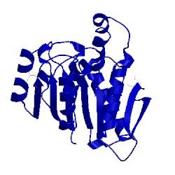 Image of CATH 3f67