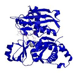 Image of CATH 3h4b