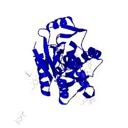 Image of CATH 3rti