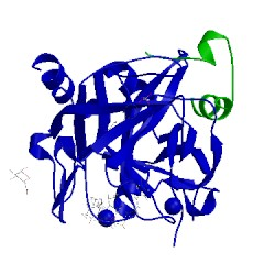 Image of CATH 4lxb