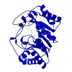 Image of CATH 4u0o