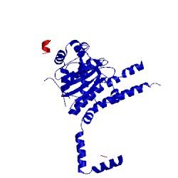 Image of CATH 4uf5