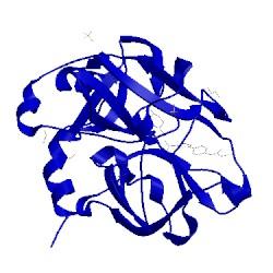 Image of CATH 5exm