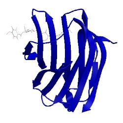 Image of CATH 5iuq