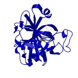 Image of CATH 5jdv