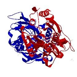 Image of CATH 5lod