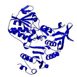Image of PDB 3fg2