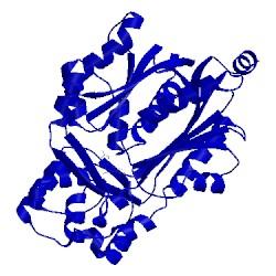 Image of PDB 1cgk