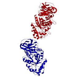 Image of PDB 2f61