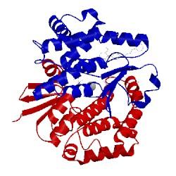 Image of PDB 4ec0
